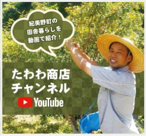 たわわ商店チャンネル